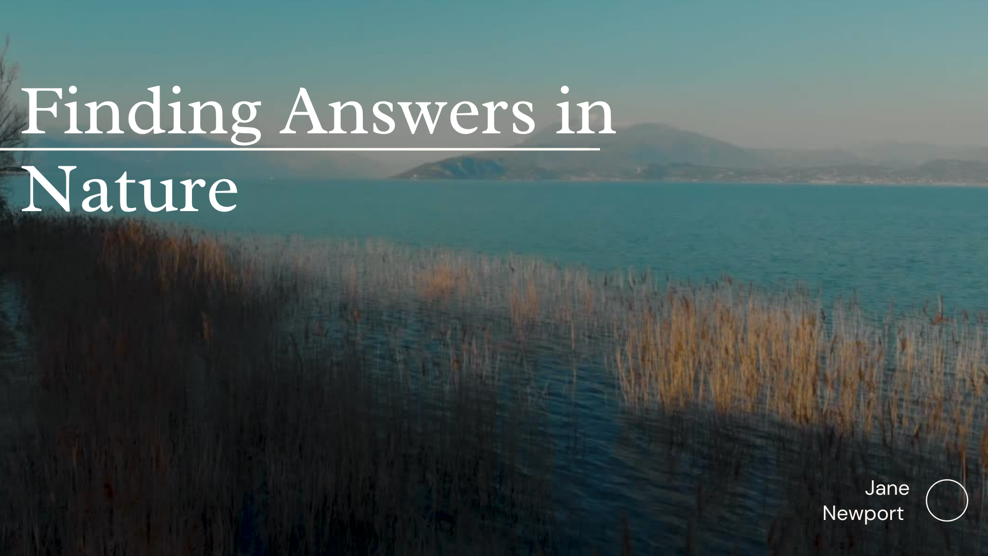 Finding Answers In Nature